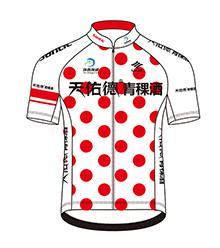 2017青海湖领骑衫正面